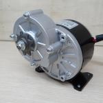250W DC 24V gear motor 3000rpm 0.80N.m (MY1016Z2)
