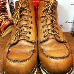 8.Redwing875 size 11E