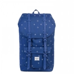 Herschel Little America - Focus
