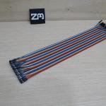 30cm Cable jumper 40P Male-Male (เมีย-เมีย)