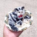 แมว สีเทามีลาย จำลองในตะกร้ากับลูกน้อย 12x15 CM [มีเสียง]