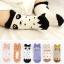 Baby Touch ถุงเท้าเด็ก ยาวบาง Jingle Bell (Socks - SJ) thumbnail 3