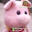 ตุ๊กตาหมูขายาว 15 นิ้ว [Anee Park] thumbnail 4
