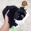 ตุ๊กตา แมวขนเปียก Lying Cat สีดำ 12 นิ้ว [Anee Park] thumbnail 2