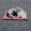 หมานอนหลับบนเบาะแดง สีเทาหูดำ 17x13 CM [มีเสียง] thumbnail 2