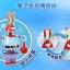 เลโก้ สปอนจ์บ๊อบ+มิสเตอร์แคร๊บส์ [Nickelodeon] thumbnail 7
