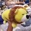 หมอนข้างสิงห์โตนุ่มนิ่ม 16 นิ้ว [Anee Park] thumbnail 1
