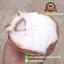 แมวสีขาว นอนหลับในตะกร้าหวาย 12x12 CM [มีเสียง] thumbnail 1