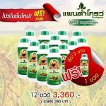 อาหารเสริมพืช แพนต้าโกรว์ 12 ขวด (แถมฟรี 1 ขวด) - ส่งฟรี