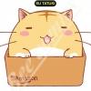 โลกบ๊องแบ๊วของแมวตัวกลม เล่ม 11 สินค้าเข้าร้านวันพฤหัสบดีที่12/10/60