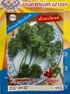 เมล็ดผักสลัด พาสเลย์ 3A