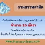 ((ประกาศงาน))กรมสรรพสามิต เปิดรับสมัครสอบเพื่อบรรจุบุคคลเข้ารับราชการ จำนวน 20 อัตรา ตั้งแต่วันที่ 20 มิถุนายน - 20 กรกฎาคม 2561