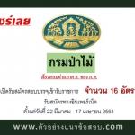กรมป่าไม้ เปิดรับสมัครสอบบรรจุเข้ารับราชการ จำนวน 16 อัตรา ตั้งแต่วันที่ 22 มีนาคม - 17 เมษายน 2561