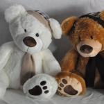 หมีผู้ดีอังกฤษ ขนาดกลาง (M) ขนาด 60 cm.