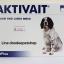 Aktivait medium and large dog 60 เม็ด Exp.08/19 thumbnail 1