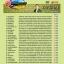 DVD28 เพลง ดีที่สุด ไวพจน์ เพชรสุพรรณ thumbnail 2