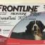 Frontline Plus for dogs สุนัข น้ำหนัก 40-60 kg บรรจุ 3 หลอด ( 1 box ) Exp.10/18 thumbnail 1
