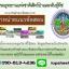 [[NEW]]แนวข้อสอบนักวิชาการกรมป่าไม้ กรมอุทยานแห่งชาติสัตว์ป่าและพันธุ์พืช Line:topsheet1 thumbnail 1