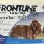 Frontline Plus for dogs สุนัข น้ำหนัก 10-20 kg บรรจุ 3 หลอด ( 1 box ) Exp.02/19 thumbnail 1