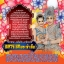 ลิเกคณะเฉลิมชัย มาลัยนาค เรื่อง ทหารเอกพระเจ้าเสือ thumbnail 2