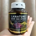 Lanature Grape Seed Extract สารสกัดจากเมล็ดองุ่น บรรจุ 30 เม็ด