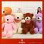 ตุ๊กตาหมียอดนิยม ขนาด 160 ซม. thumbnail 9