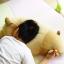 ตุ๊กตาหมีขี้เซา Sleepy bear สีช็อคโกแลตฮอกไกโด (ใย3D) thumbnail 7