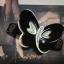 กิ๊บสปริงรูปผีเสื้อ thumbnail 4