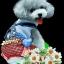ลายสกรีนฮาฟโทนแนวสุนัข thumbnail 1