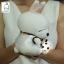 ตุ๊กตามาชิมาโร่ thumbnail 3