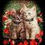 ลายสกรีนฮาฟโทนแนวแมว thumbnail 1