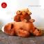 หมีหลับตัวใหญ่ นุ่มนิ่ม ใยไมโครนุ่ม thumbnail 2