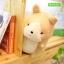 พร้อมส่ง!! ตุ๊กตาน้องหมา #น้องอย่าลืมกัน น่ารักม๊าก จากซีรี่ย์ What's Wrong With Secretary Kim? thumbnail 5