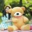 ตุ๊กตาหมีหลับ ขนาด 160 CM. (สินค้าขายดี) thumbnail 1