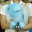 ตุ๊กตา (โปเกมอน) โซนาส 12 นิ้ว Pokemon thumbnail 2