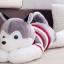 ตุ๊กตาสุนัขไซบีเรียน สวมสเวตเตอร์ thumbnail 2