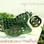 การ์ดป๊อปอัพ มอเตอร์ไซด์สีเขียว thumbnail 4