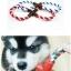 ของเล่นสุนัข ห่วงเชือกลาย thumbnail 1