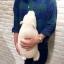 ตุ๊กตาหมีขี้เซา Sleepy bear สีขาวมาชเมลโล่ (ใย3D) thumbnail 4