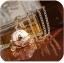 สร้อยคอแฟชั่น รูปรถฟักทองเปิดฝาได้ thumbnail 1