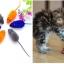ของเล่นแมว หนูสีแฟนซี (5 ชิ้น 95 / 10 ชิ้น 140) thumbnail 1