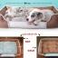 เบาะนอนสุนัข ไซส์ L thumbnail 1