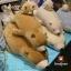 *ใย3D* ตุ๊กตาหมีขี้เซา Sleepy bear สีช็อคโกแลตฮอกไกโด thumbnail 2