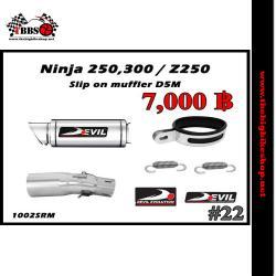 ท่อ Ninja250-300/Z250-300 Devil Slip on muffler D5M #22