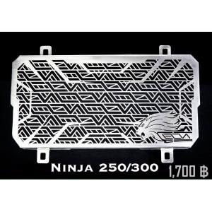 การ์ดหม้อน้ำ Leon Ninja 250, Ninja 300
