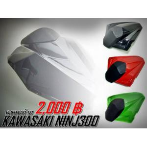 ตูดมด นินจา250-300 (2012-2014)