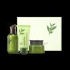 INN-01 Innisfree อินนิสฟรี The green tea seed serum special care set 3 Items in Box, Innisfree the green tea seed serum special care set เซ็ตบำรุงผิวเพิ่มความชุ่มชื้น ผสานประสิทธิภาพของน้ำสกัดชาเขียวออร์แกนิกเชจู เซรั่ม 80ml. โฟม 30ml. ครีม 20ml.
