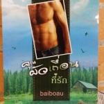 คุณผัวเถื่อนที่รัก / Baibaou