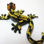 ตุ๊กแก Gecko