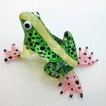 กบ Frog